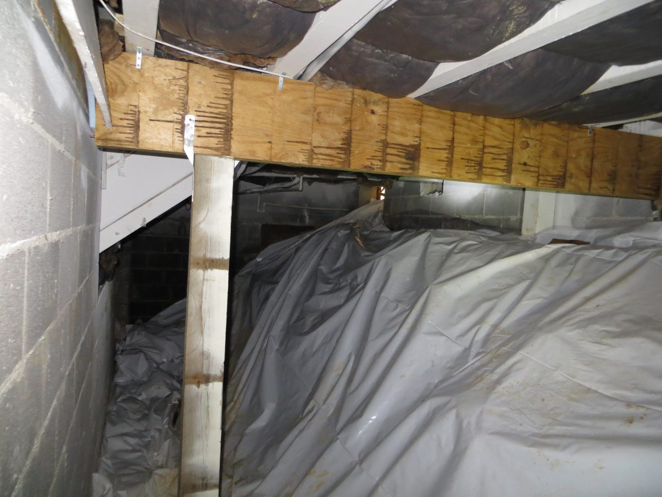 Infinity Construction Mold Remediated And Structural